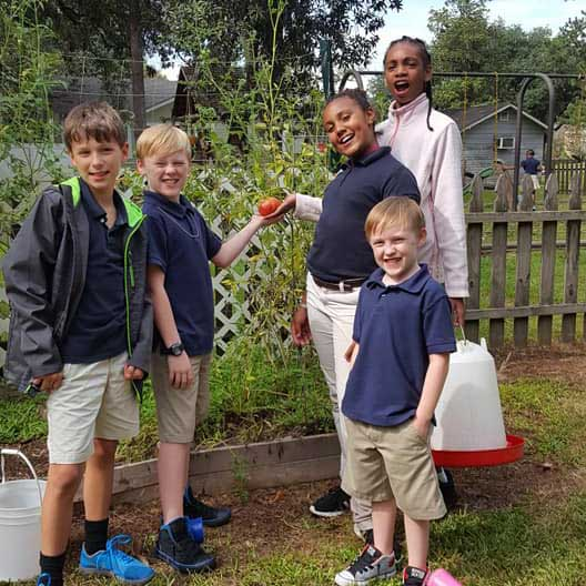 LANDers After School Kids Grow Tomatoes in the Garden