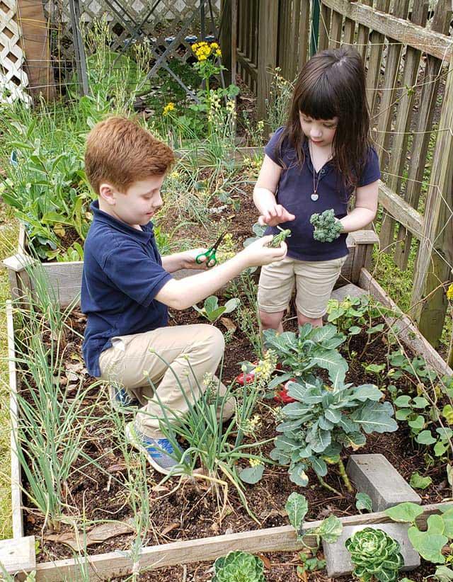 Two LANDers After-School Children in the Vegetable Garden